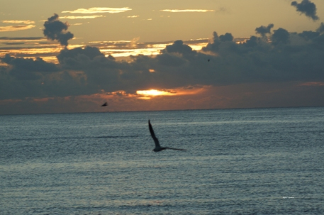 Sunrise in Deerfield Beach