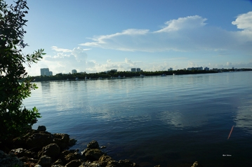 Florida International University ~ North Miami Campus ~ Bay Area