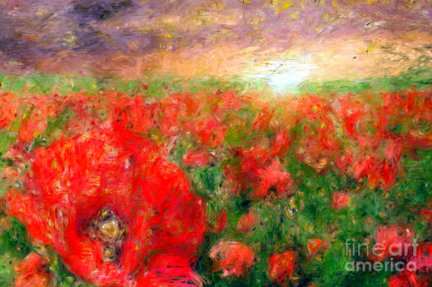 Abstract Landscape Of Red Poppies by Rafael Salazar 2015