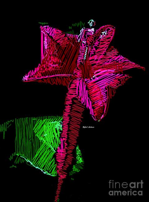 Amaryllis by Rafael Salazar 2016