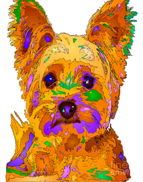 Cupcake The Yorkie. Pet Series by Rafael Salazar © 2015
